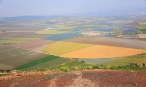 Picturesque valley in the Galilee.